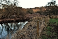 The River Stour towards the Northern Pasture.